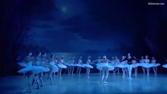hung ballet: swan lake