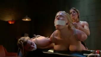 Two busty sex dolls Felony and Jessie Cox are sharing pain