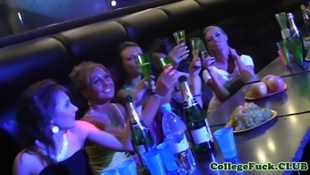drunk girls fidgets with their pussies on bigcocks of horny guys