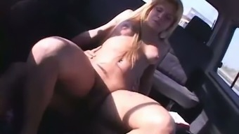 Real shemale Hilda Brasil gets brutally anal banged in the vehicle