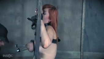 Busty beautiful redhead Lauren Phillips tries out some hardcore BDSM stuff